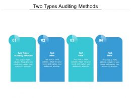 Two Types Auditing Methods Ppt Powerpoint Presentation Styles Display Cpb