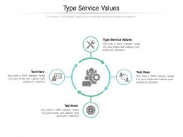 Type Service Values Ppt Powerpoint Presentation Professional Icon Cpb