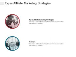 Types Affiliate Marketing Strategies Ppt Powerpoint Presentation File Guide Cpb