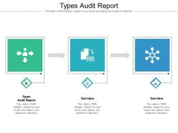 Types Audit Report Ppt Powerpoint Presentation Infographic Template Cpb