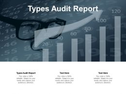Types Audit Report Ppt Powerpoint Presentation Styles Smartart Cpb