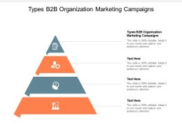 Types B2B Organization Marketing Campaigns Ppt Powerpoint Presentation Portfolio Good Cpb