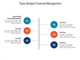 Types Budget Financial Management Ppt Powerpoint Presentation Professional Graphics Design Cpb