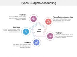 Types Budgets Accounting Ppt Powerpoint Presentation Gallery Slide Cpb
