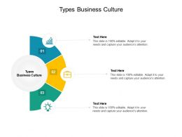 Types Business Culture Ppt Powerpoint Presentation File Styles Cpb