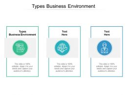 Types Business Environment Ppt Powerpoint Presentation Outline Ideas Cpb