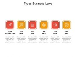 Types Business Laws Ppt Powerpoint Presentation Professional Example Topics Cpb