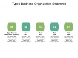 Types Business Organization Structures Ppt Powerpoint Presentation Gallery Graphics Template Cpb