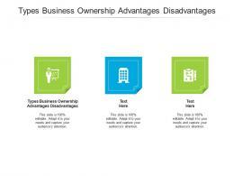 Types Business Ownership Advantages Disadvantages Ppt Powerpoint Presentation Ideas Cpb
