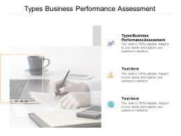 Types Business Performance Assessment Ppt Powerpoint Presentation Layouts Cpb
