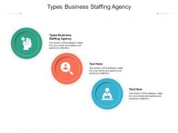 Types Business Staffing Agency Ppt Powerpoint Presentation Infographic Template Example File Cpb