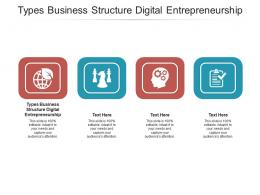 Types Business Structure Digital Entrepreneurship Ppt Powerpoint Presentation Icon Slide Cpb