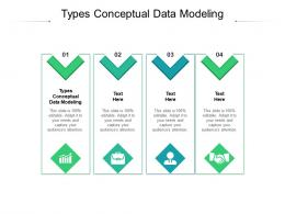 Types Conceptual Data Modeling Ppt Powerpoint Presentation File Files Cpb