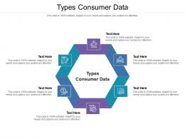 Types Consumer Data Ppt Powerpoint Presentation Slides Example File Cpb