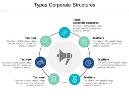 Types Corporate Structures Ppt Powerpoint Presentation Infographics Files Cpb