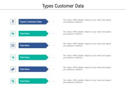 Types Customer Data Ppt Powerpoint Presentation Infographics Example Cpb
