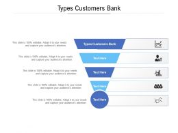 Types Customers Bank Ppt Powerpoint Presentation Slides Graphics Cpb