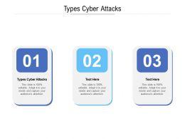 Types Cyber Attacks Ppt Powerpoint Presentation Model Portfolio Cpb