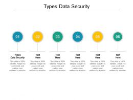 Types Data Security Ppt Powerpoint Presentation Layouts Graphics Cpb