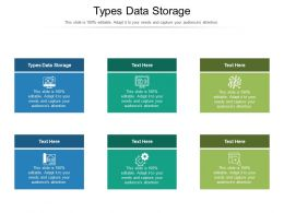 Types Data Storage Ppt Powerpoint Presentation File Designs Cpb