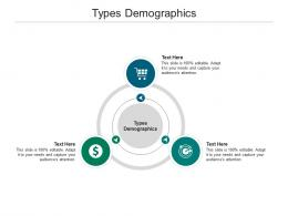 Types Demographics Ppt Powerpoint Presentation File Samples Cpb