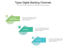 Types Digital Banking Channels Ppt Powerpoint Presentation Slides Microsoft Cpb