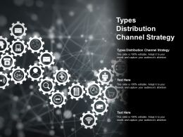 Types Distribution Channel Strategy Ppt Powerpoint Presentation Inspiration Example Cpb