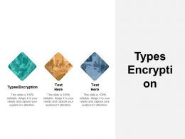 Types Encryption Ppt Powerpoint Presentation Outline Ideas Cpb