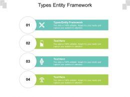 Types Entity Framework Ppt Powerpoint Presentation Outline Demonstration Cpb