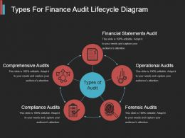 Types For Finance Audit Lifecycle Diagram Ppt Slide Styles