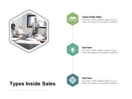 Types Inside Sales Ppt Powerpoint Presentation File Icon Cpb