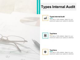 Types Internal Audit Ppt Powerpoint Presentation Visual Aids Example File Cpb