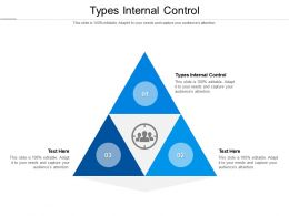Types Internal Control Ppt Powerpoint Presentation Professional Graphics Example Cpb