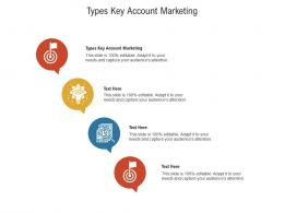 Types Key Account Marketing Ppt Powerpoint Presentation Styles Infographic Template Cpb