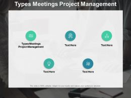 Types Meetings Project Management Ppt Powerpoint Presentation Images Cpb