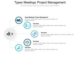 Types Meetings Project Management Ppt Powerpoint Presentation Pictures Themes Cpb