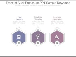 Types Of Audit Procedure Ppt Sample Download