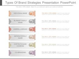 Types Of Brand Strategies Presentation Powerpoint