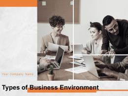 Types Of Business Environment Powerpoint Presentation Slides
