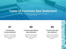 Types Of Common Size Statement Ppt Layouts Introduction