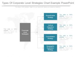 Types Of Corporate Level Strategies Chart Example Powerpoint