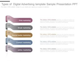 Types Of Digital Advertising Template Sample Presentation Ppt