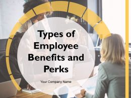 Types Of Employee Benefits And Perks Powerpoint Presentation Slides