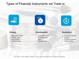 Types Of Financial Instruments We Trade In Primary Ppt Professional Format