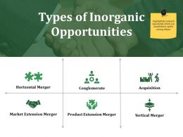 Types Of Inorganic Opportunities Ppt Styles Examples