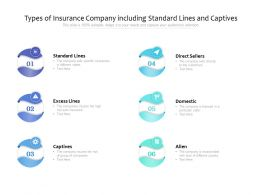 Types Of Insurance Company Including Standard Lines And Captives