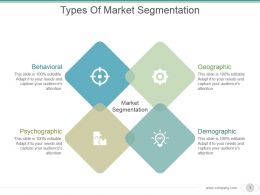 Types Of Market Segmentation Powerpoint Slide Template