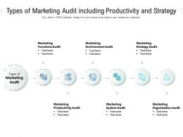 Types Of Marketing Audit Including Productivity And Strategy