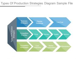 Types Of Production Strategies Diagram Sample File