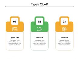 Types OLAP Ppt Powerpoint Presentation Summary Demonstration Cpb